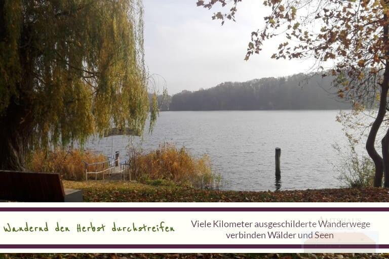 Amtshaus Flecken Zechlin Herbstbild